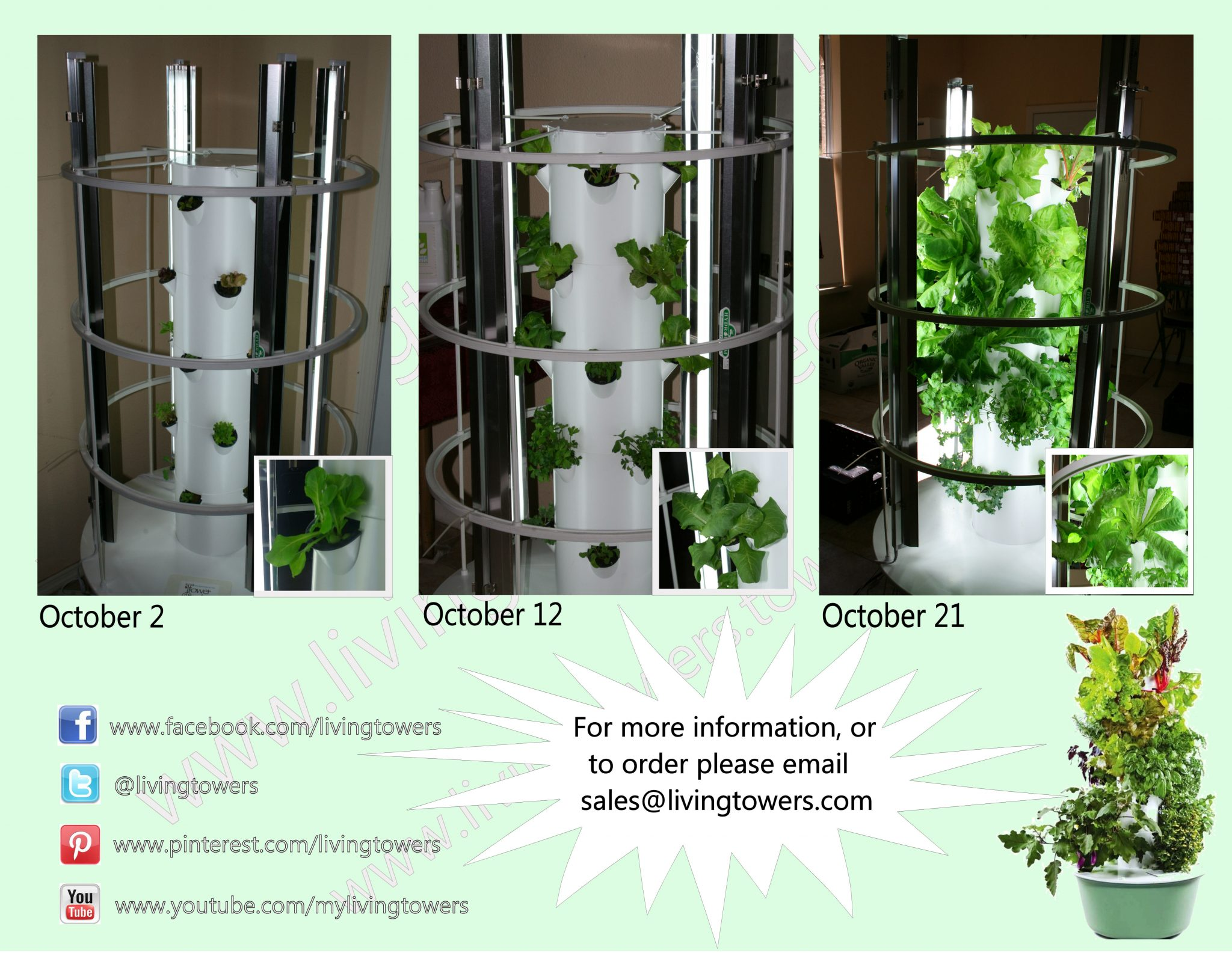 Tower Garden Grow Light Progression