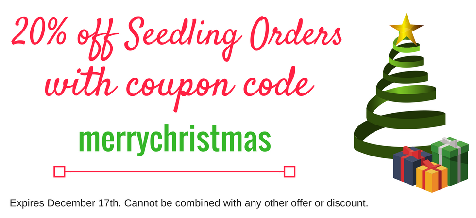 20% off Seedling Orders