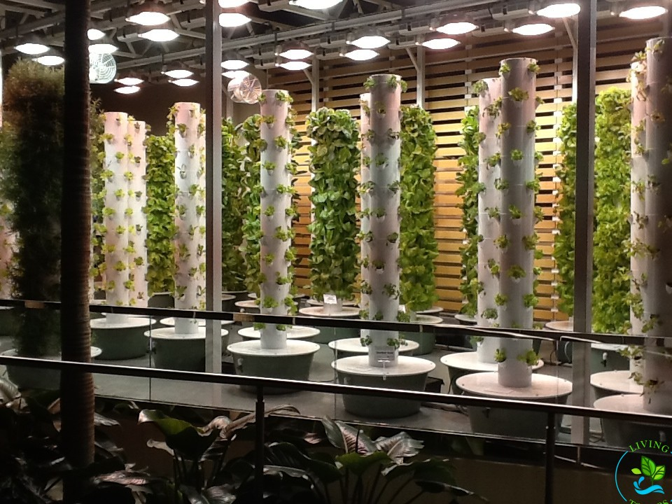 Tower Gardens at the Orange County Convention Center under Grow Lights
