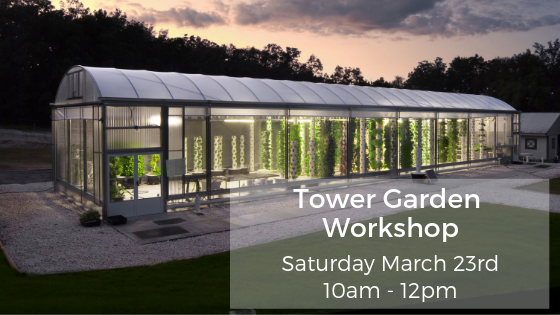 Tower Garden Workshop March 23 2019